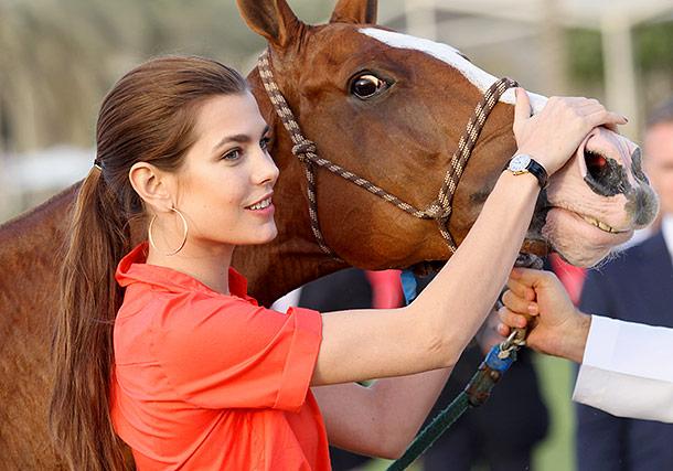 Развлечение аристократов – конный спорт Монако